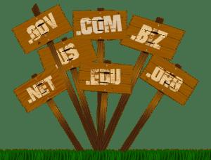 How to Create a Blog in WordPress - Choosing a Domain Name Image